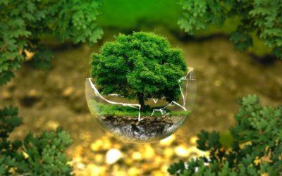 Cantieri Green: come sostenere l'ambiente nel 2020